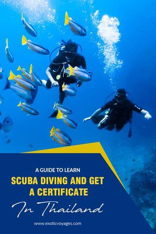 guide-scuba-diving-TL