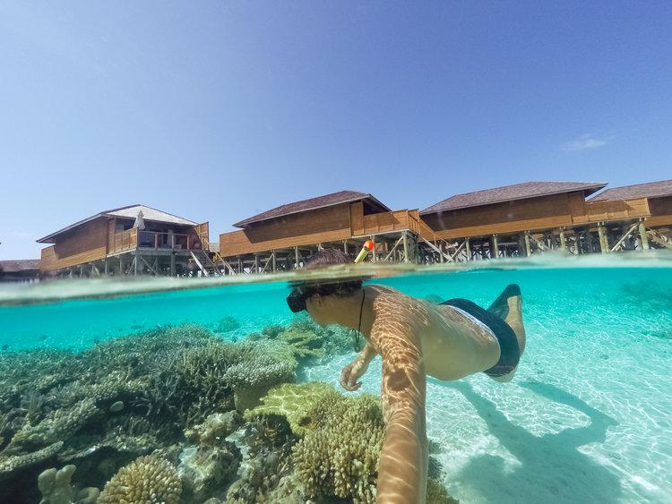 https://s3-us-west-1.amazonaws.com/exoticvoyages-wp/20180713014934/Cu-lao-cham_snorkeling.jpg