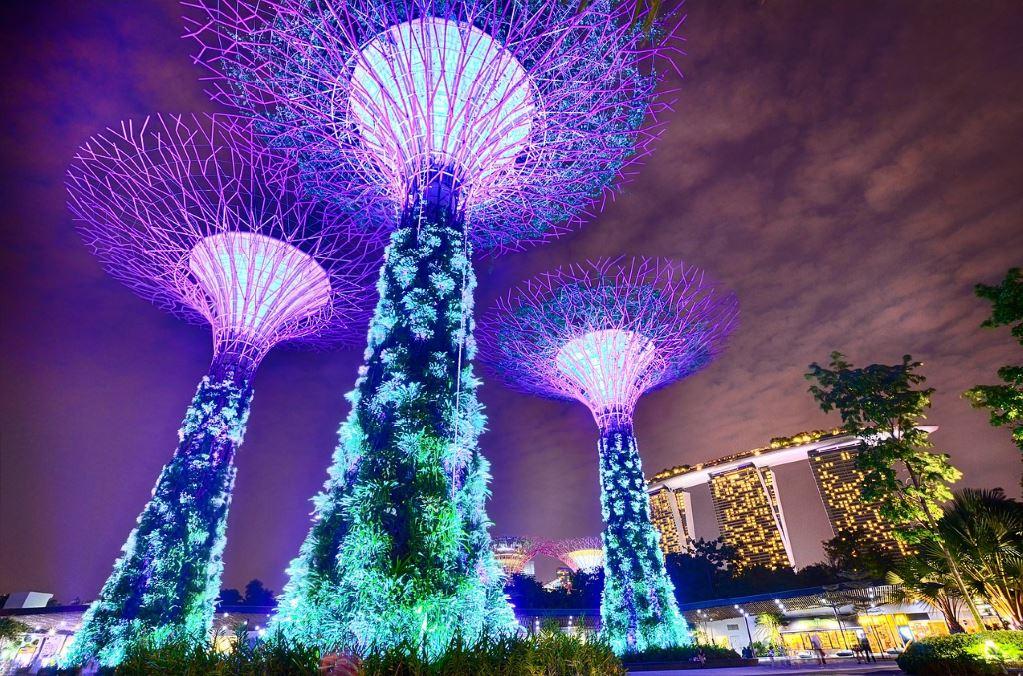 gardens-by-the-bay-singapore-light-show