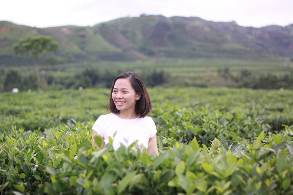 A tea plantation in Thanh Son