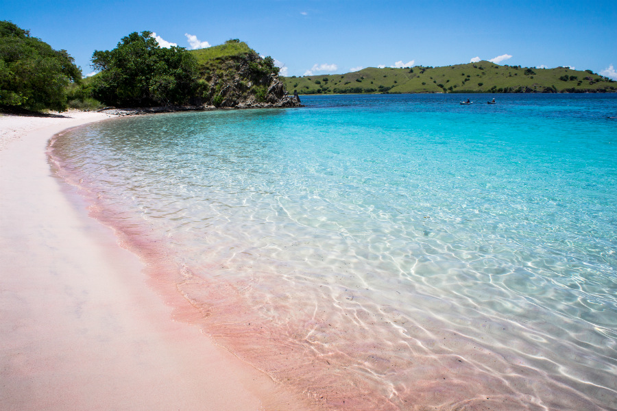 ... and one of the only seven beaches in the world with the unique pink sand.