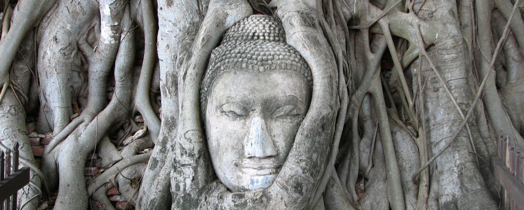 buddha_head_at_ayuthaya_thailand