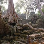 Sacred Temple Of Ta Prohm