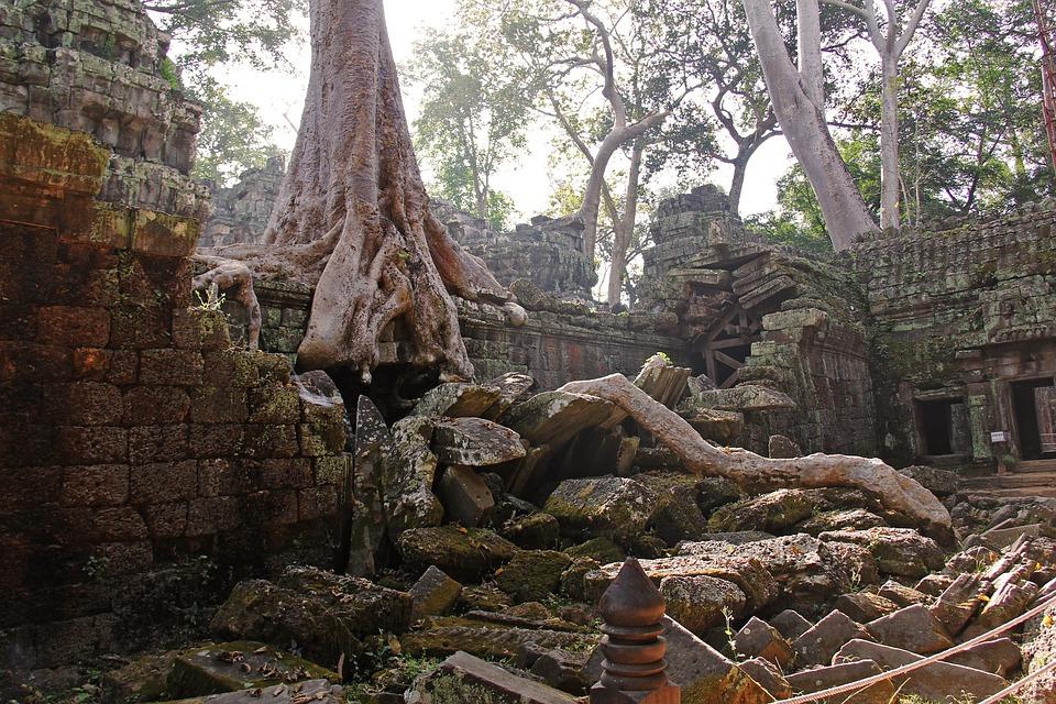 Sacred Temple Of Ta Prohm