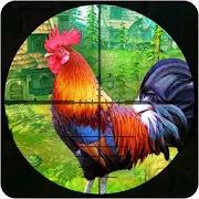 Wild Chicken Shooting: Crazy Chicken Crazy Rooster