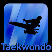 Taekwondo Kicks Videos - Offline