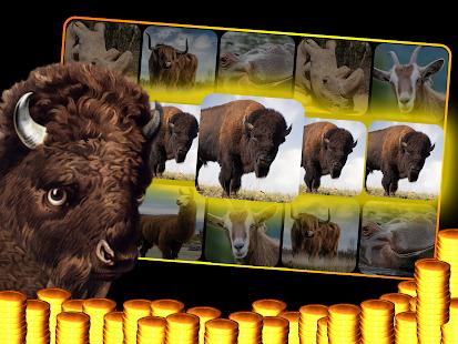 Buffalo Slot Machine : Casino Slots 777 Wild Vegas Screenshot