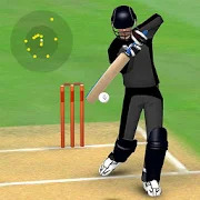 Smashing Cricket - a cricket game like none other