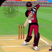 Smashing Cricket - a cricket game like none other.