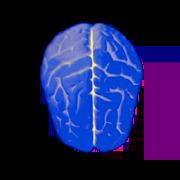 Logical test - IQ