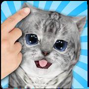Talking Cat Funny Kitten Sound