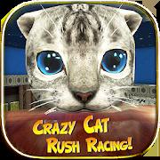 Crazy Cat Rush Racing Run Kitty Craft