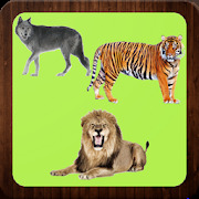 Wild Animals - Learning Name of Animals