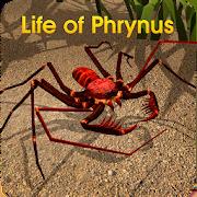 Life of Phrynus - Whip Spider