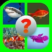 Tebak Nama Ikan