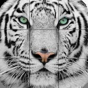 Puzzle - Wild animals