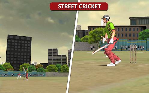 MSD: World Cricket Bash Screenshot