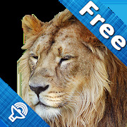 Kids Zoo animal sounds & pictures games for kids