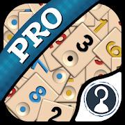 Okey Pro