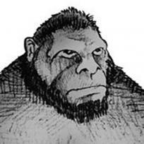 Games lol | Game » Bigfoot Sounds & Bigfoot Hunting Calls