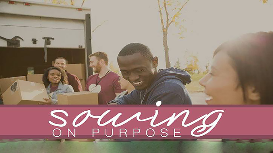 Sowing On Purpose
