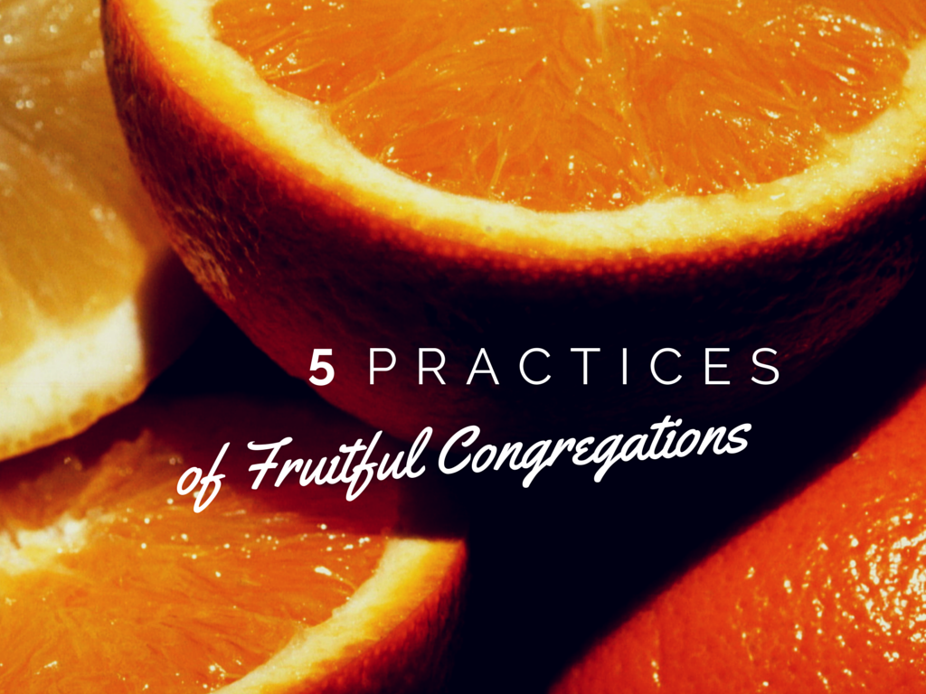 5 Practices of Fruitful Congregations