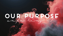 Our Purpose: Unpacking It