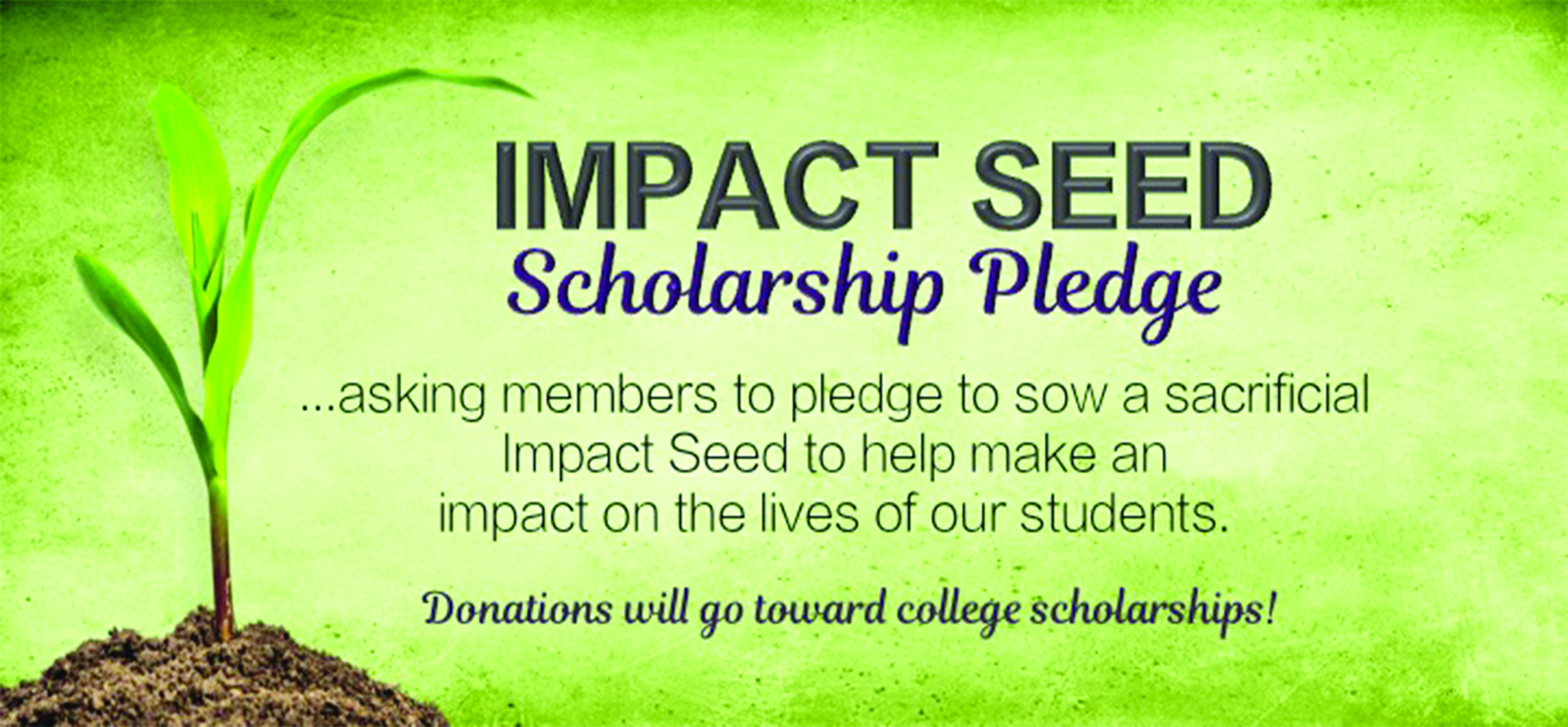 Impact Seed Scholarship Pledge