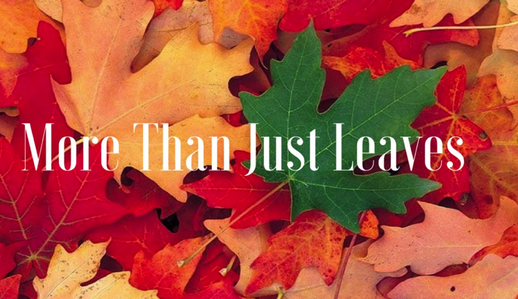 More than Leaves