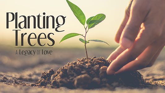 Planting Trees: A Legacy of Love