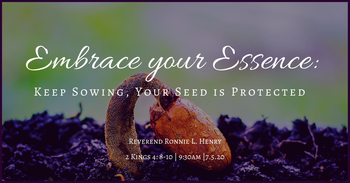 Embrace your Essence: Keep Sowing, Your seed is Protected!