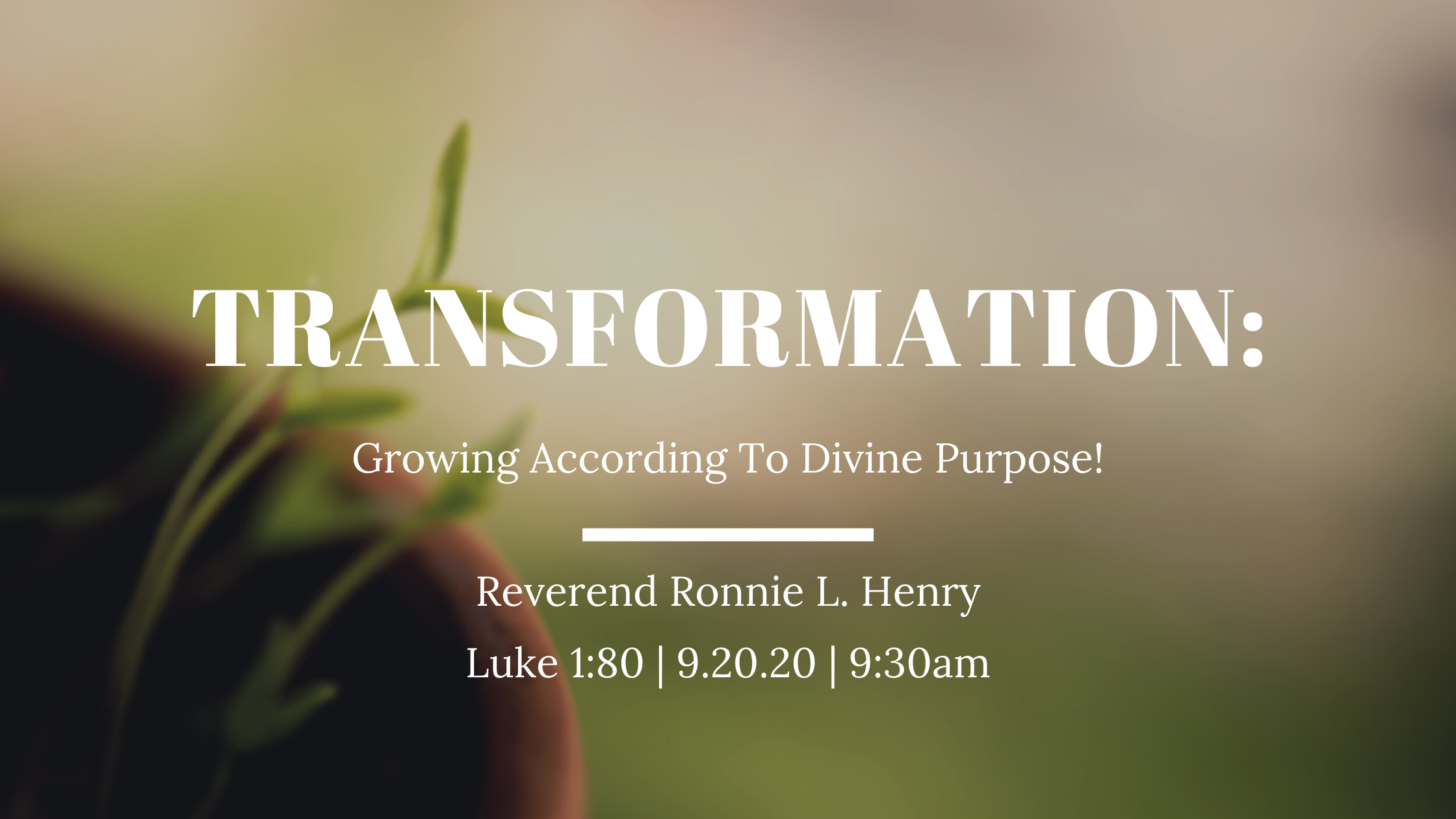 Transformation: Growing According to Divine Purpose!