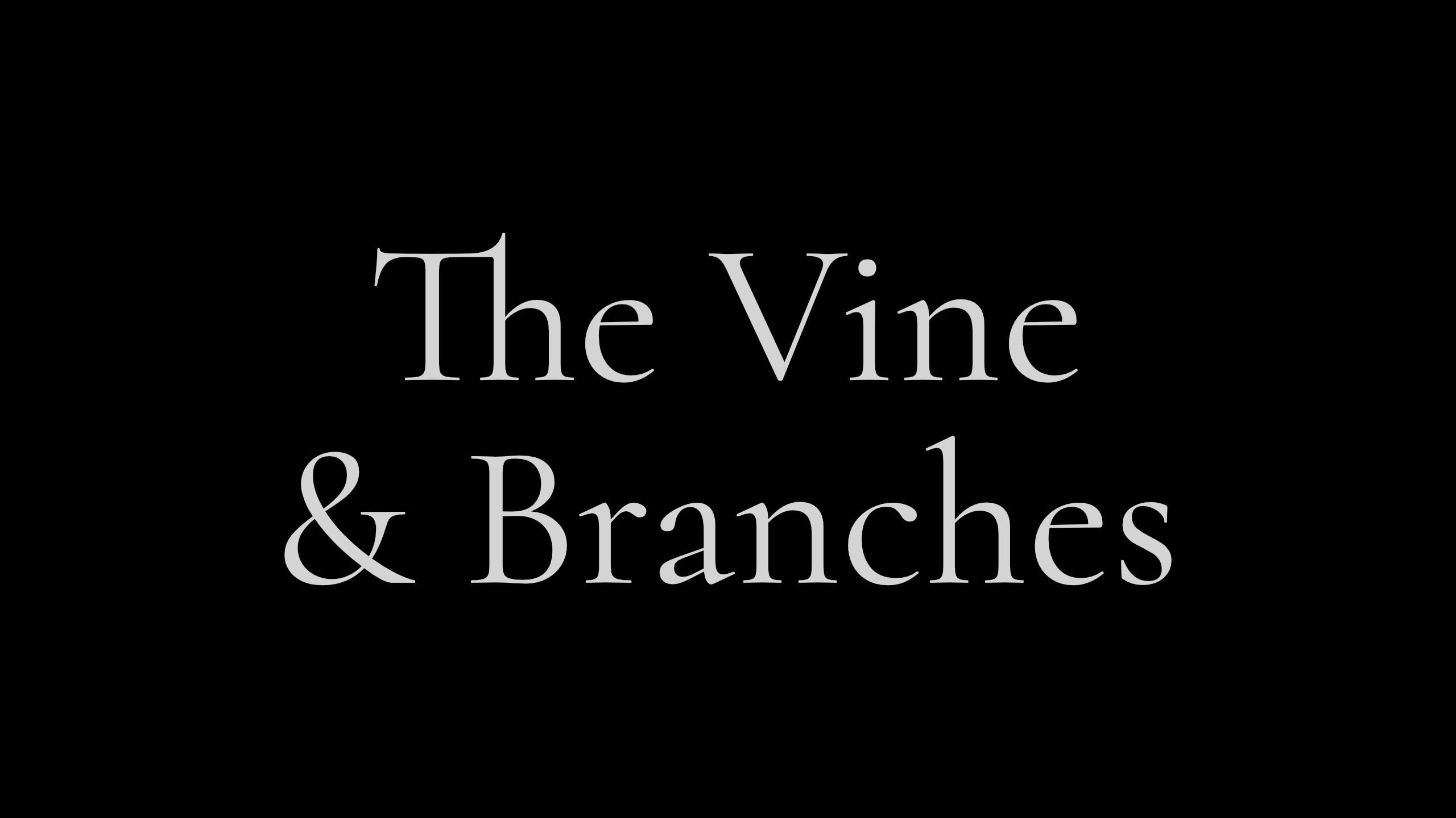 The Vine & Branches