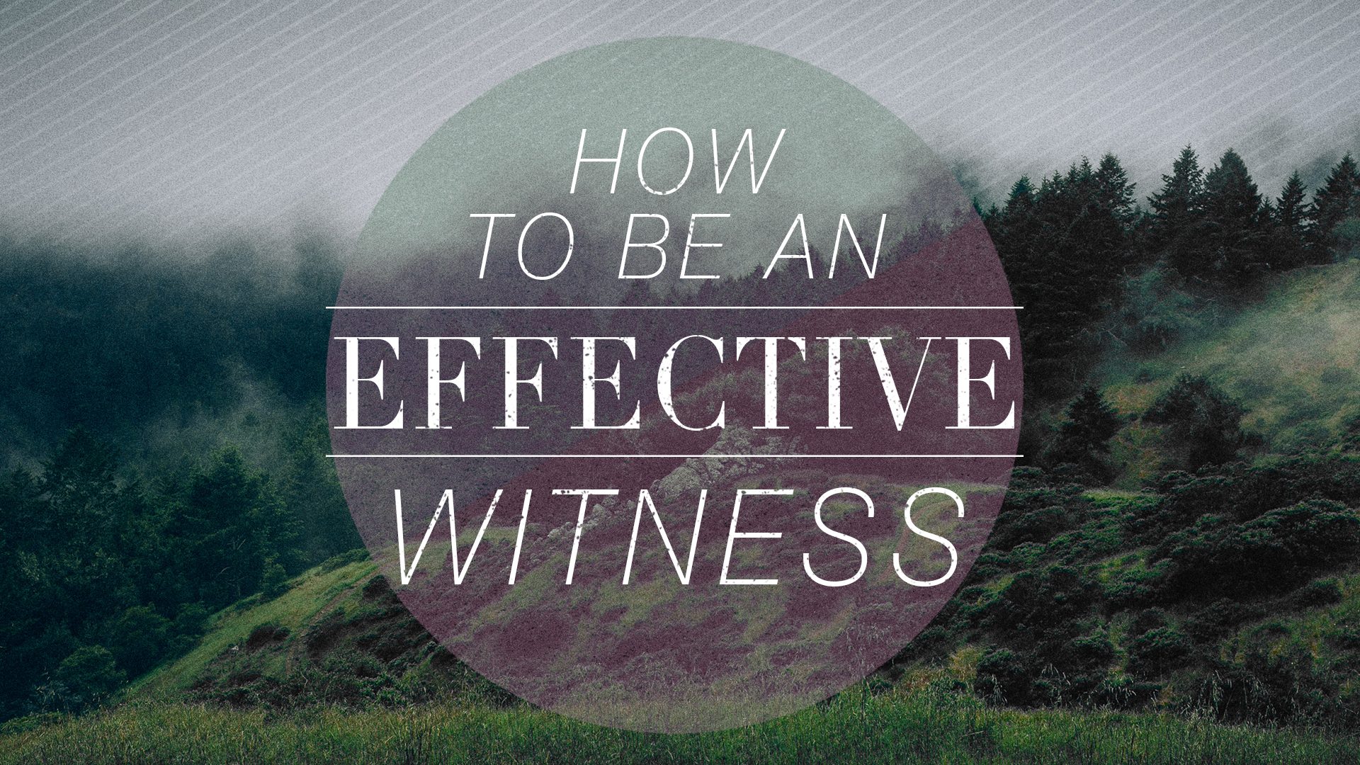 How To Be An Effective Witness