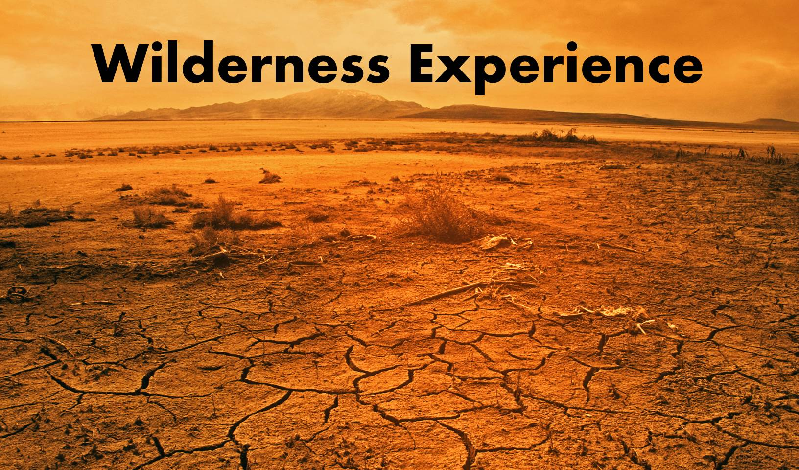 Wilderness Experience