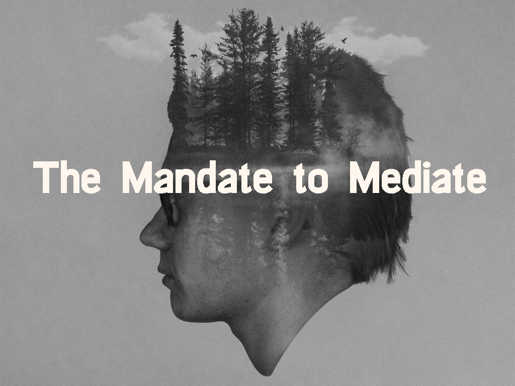 The Mandate to Meditate