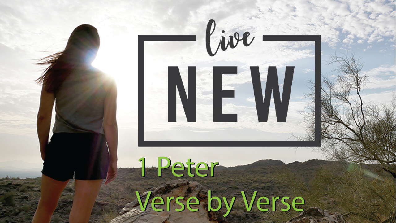 Live New  (Verse by Verse through 1 Peter)