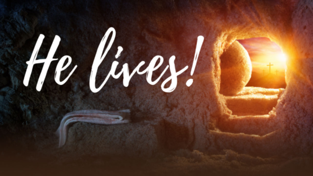 Jesus New Life and Ours