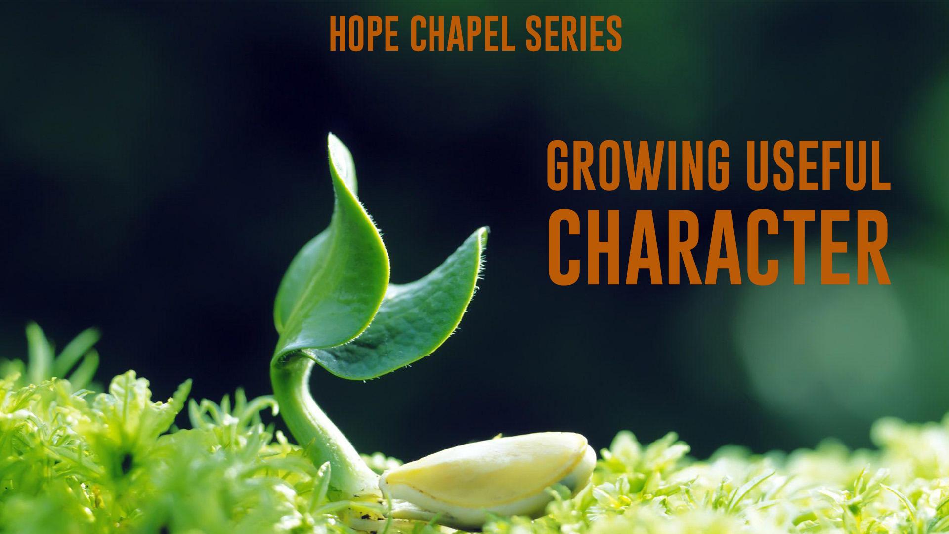 Sermon Series: Growing Useful Character