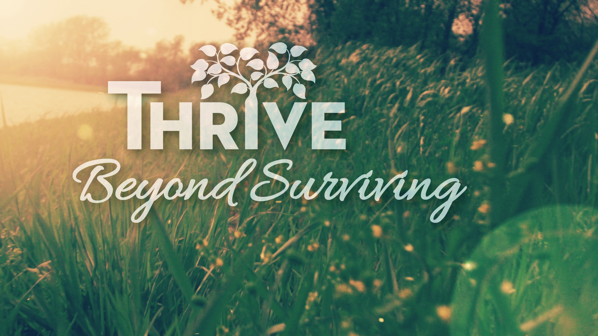 Thrive: Beyond Surviving