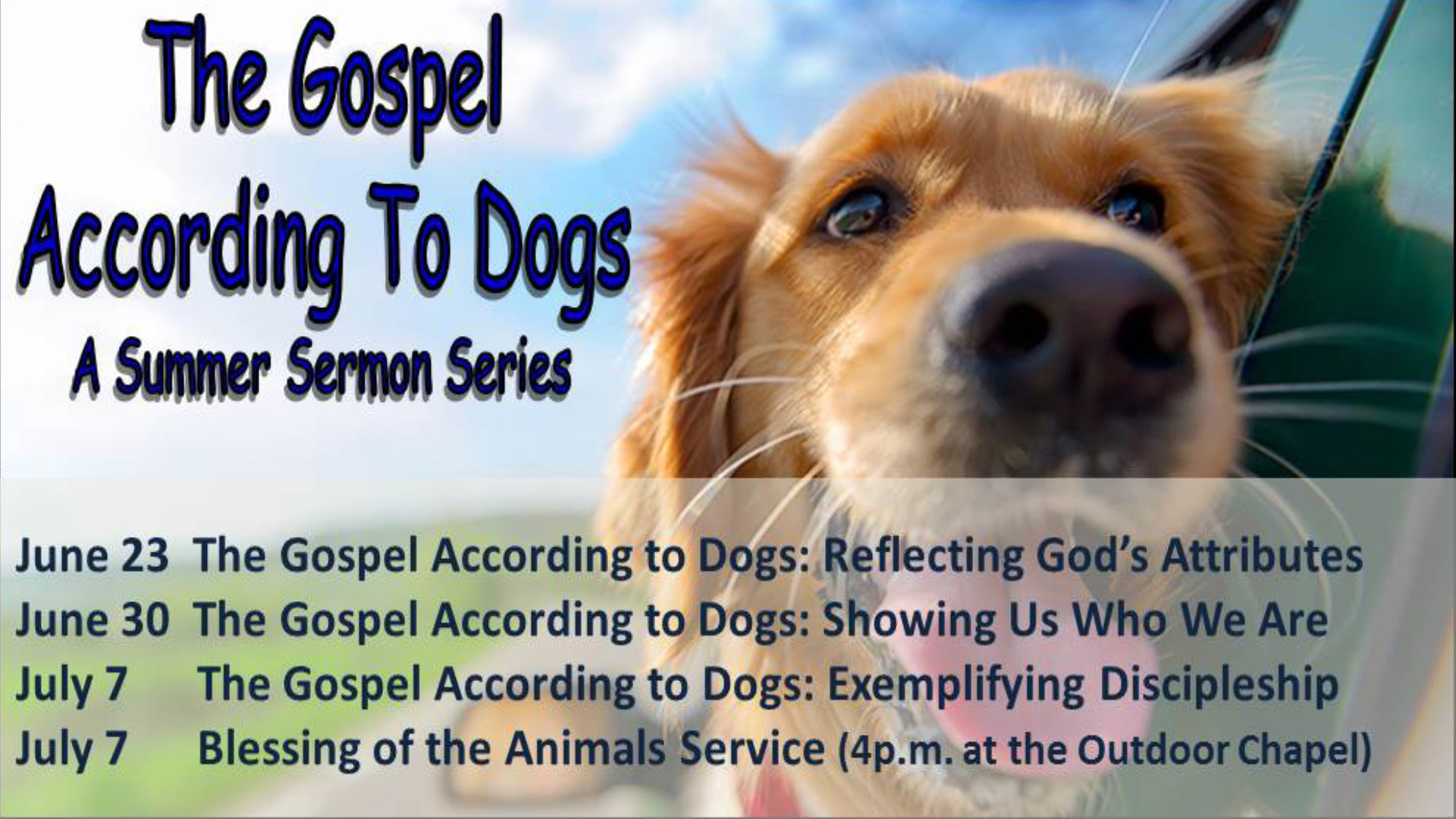 The Gospel According the Dogs