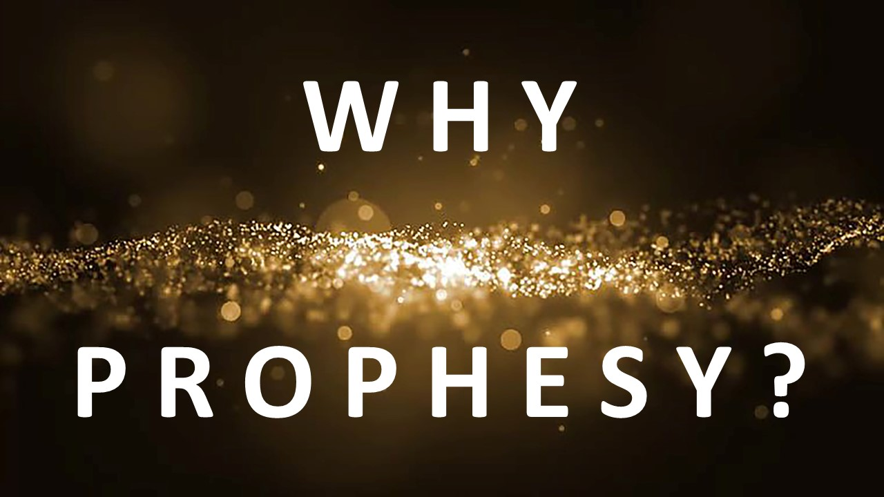 Why Prophesy?