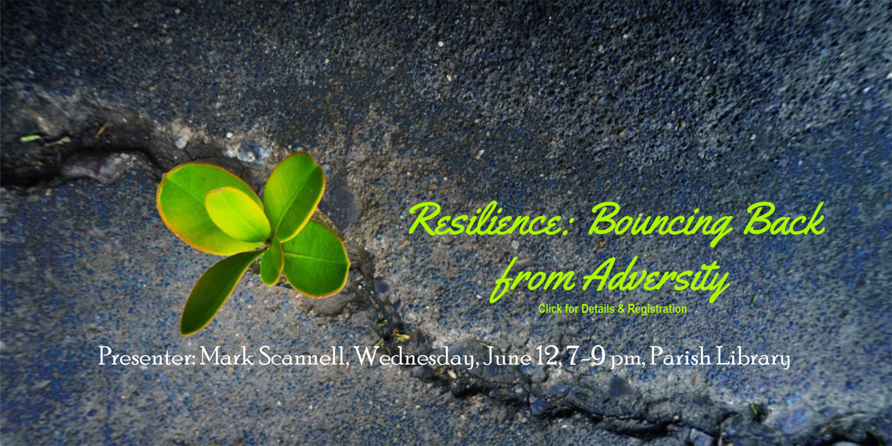 Resilience: Bouncing Back from Adversity