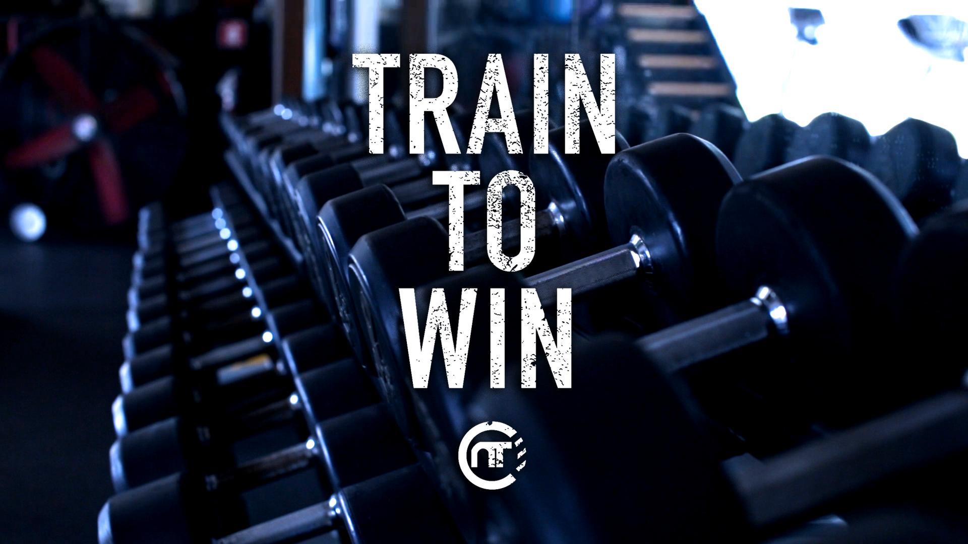 Train To Win - Week 8
