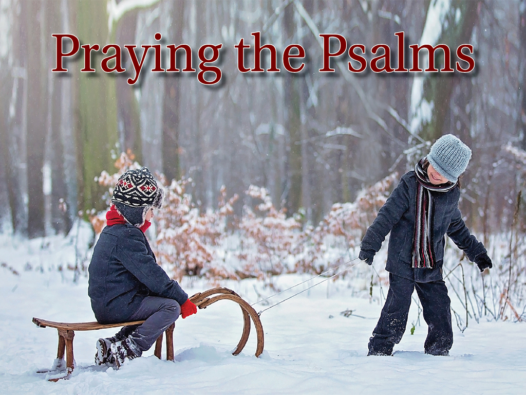 Praying the Psalms* February 3- February 24, 2019