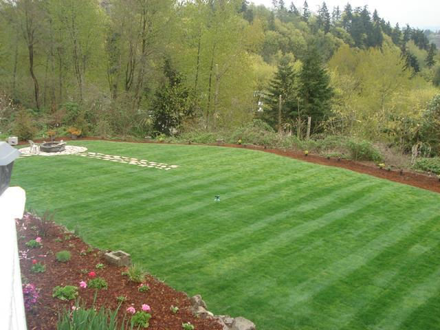 New Lawn & Sprinklet Systems