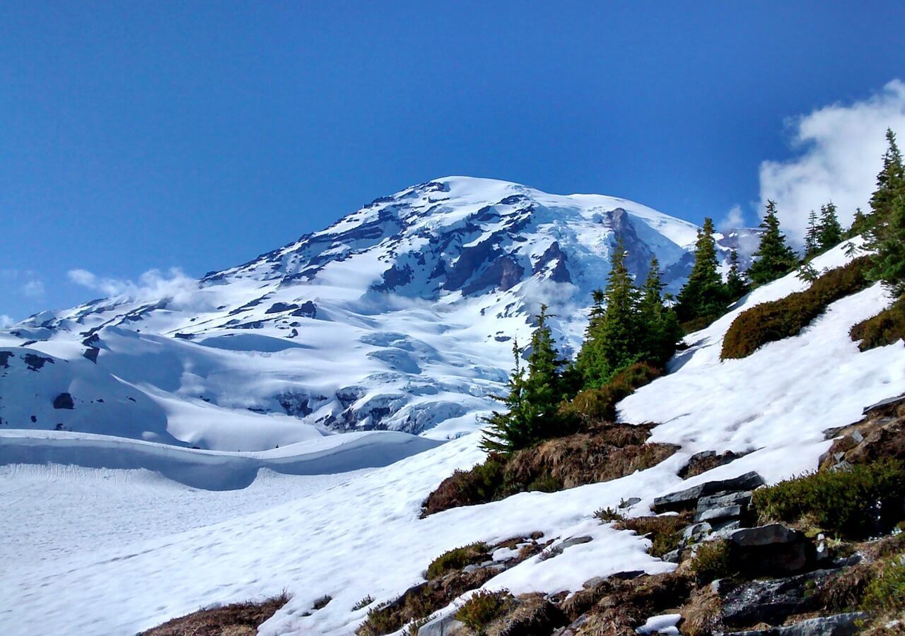Mt. Rainier national park