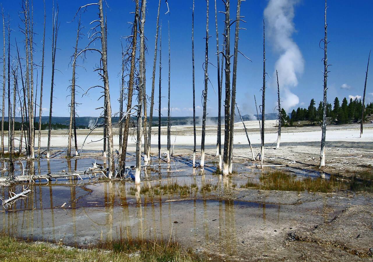 远通游(www.fargotour.com)为您提供黄石深度之旅。