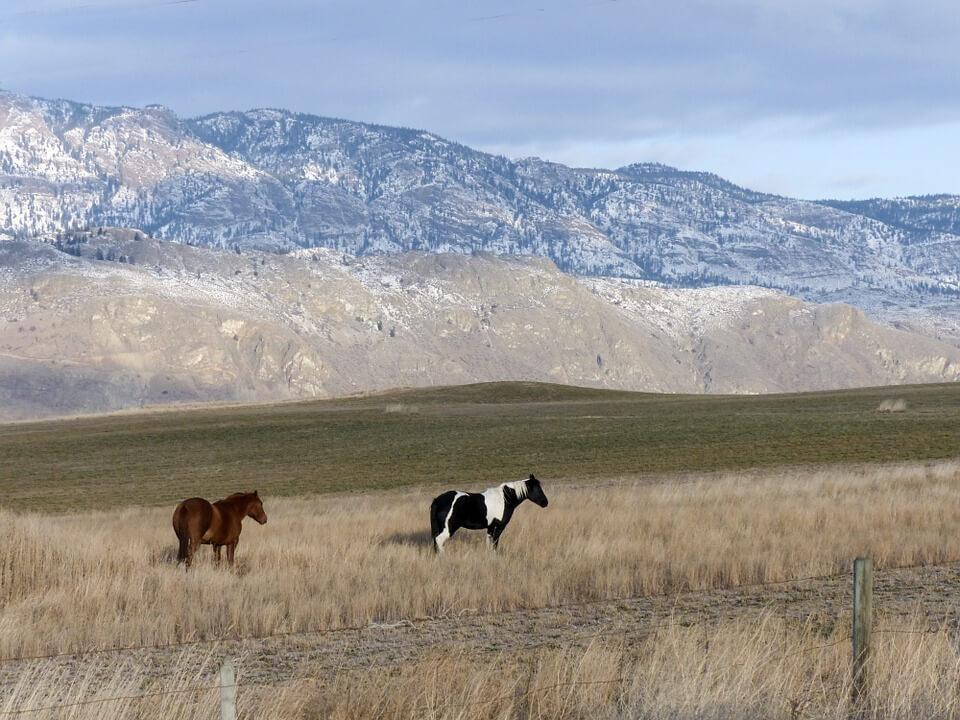 6 Days Rocky Mountains Economy Tour