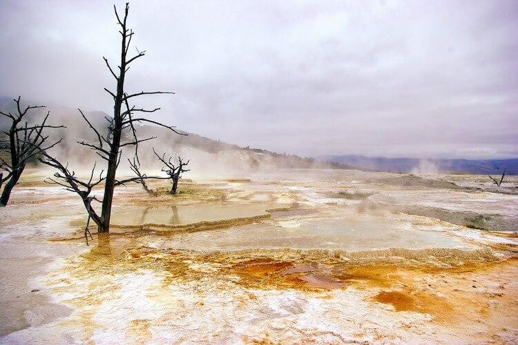 yellowstone_NP_750-500_01
